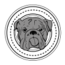 Boston Bulldogs Running Club | A Co-Ed Non-Profit Running Club